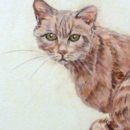 Tutorial dipingere sassi a forma di gatto